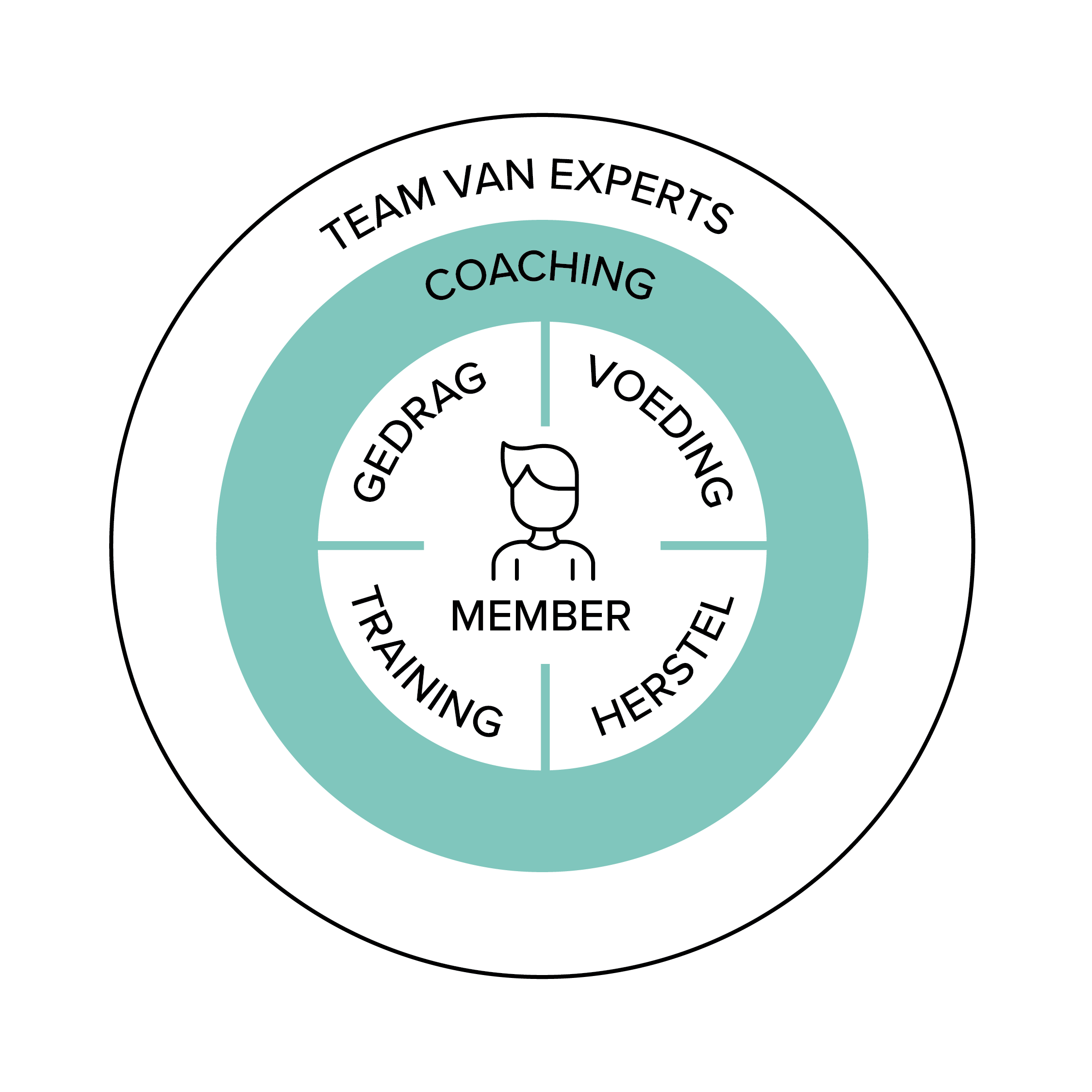 Team-Around-The-Team